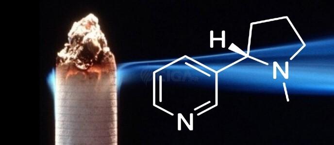 E-cigarette : La nicotine ne rendrait pas dépendant !